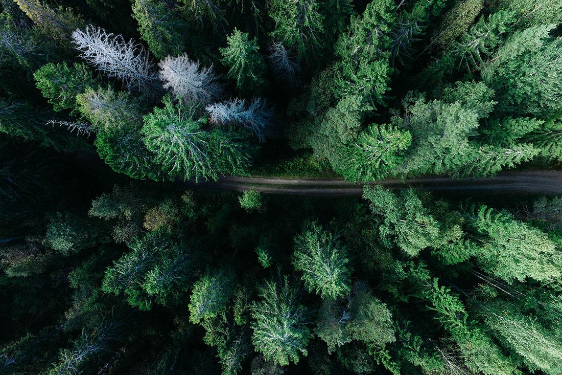 Miljö och garanti
